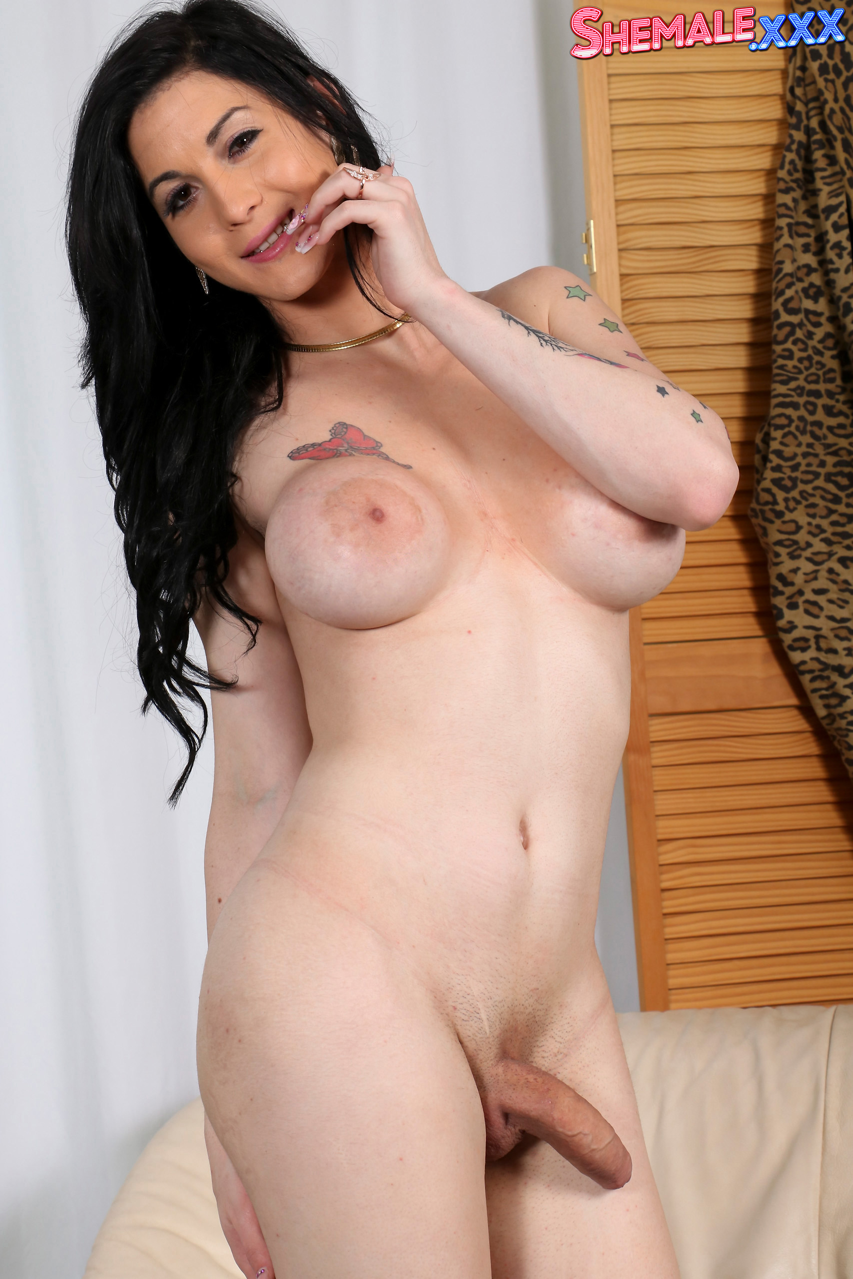 Hot shemales solo